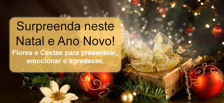Especial de Natal e Boas Festas