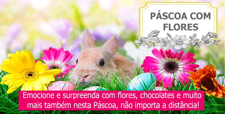Especial de Páscoa com flores e chocolates!