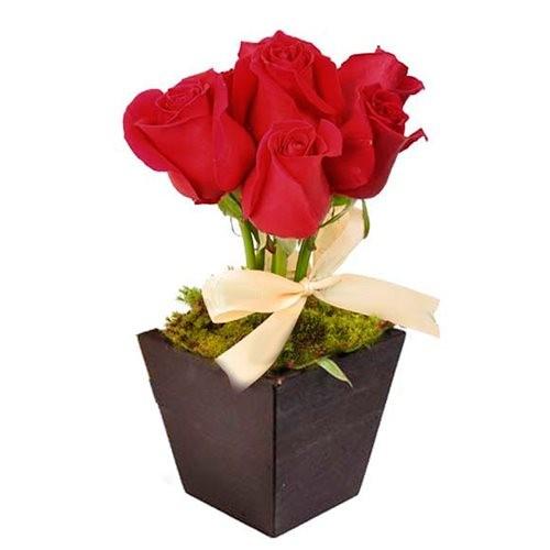 Arranjo de Rosas Amore Mio Uniflores