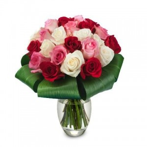 ROSE TRIO: RED, PINK AND WHITE