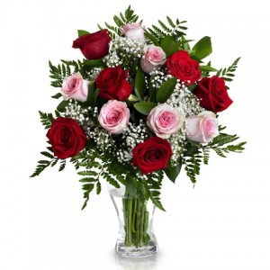 EXPLOSION OF COLOUR: 12 RED AND PINK ROSES