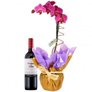 Orquídea Lilás com vinho