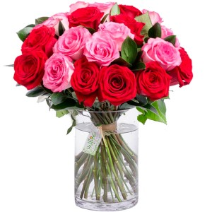 Buquê Tradition Pink and Red Roses com Vaso