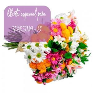 Buque Garden de flores do campo para Teresina - PI