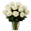 Puro Amor Luxo: Buquê com doze rosas brancas no vaso