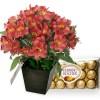Arranjo de Flores Alstroemerias e Ferrero Rocher