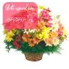 Oferta de flores especial para Arapiraca: Cesta de Flores do Campo