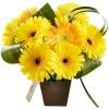 Arranjo de Flores - Você é luz