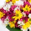 Buquê de Margaridas Coloridas com Vaso - Flores do Campo