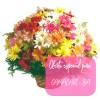 Oferta de flores especial para Camaçari: Cesta de Flores do Campo