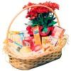 Oferta especial: cesta de café da manhã luxo para Cuiabá - MT