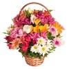 Cesta de Flores da Época - Uniflores
