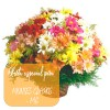 Oferta de flores especial para Montes Claros: Cesta de Flores do Campo