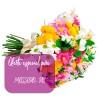 Buque Garden de flores do campo para Mossoró - RN