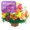 Oferta de flores especial para Patos de Minas: Cesta de Flores do Campo