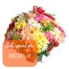 Oferta de flores especial para Teresina: Cesta de Flores do Campo