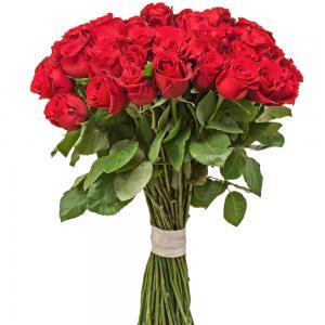 Buquê Supreme 50 Rosas Luxo