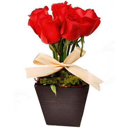 Arranjo de Rosas Amore Mio