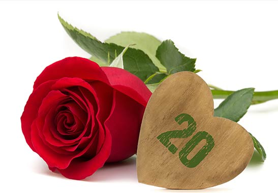 Promoção Aniversário Flores