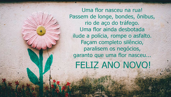 Feliz ano novo Uniflores
