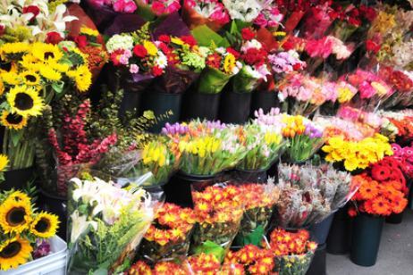Flores e Dia de Finados