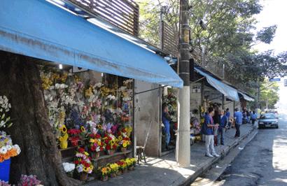 Bancas de flores Avenida Doutor Arnaldo
