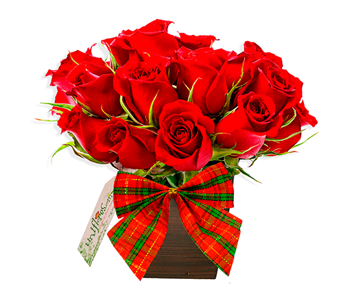 Arranjo de Rosas para o Natal