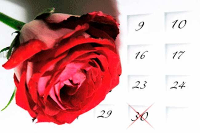 Dia da secretária: flores e cestas