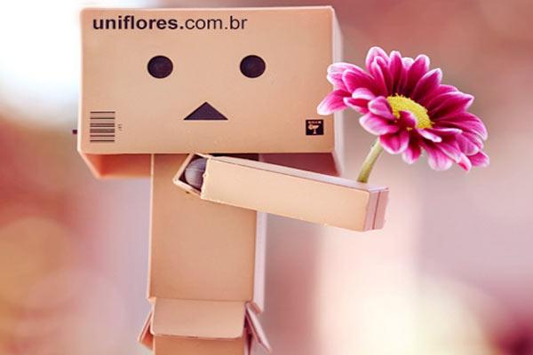 Entrega de Flores Gŕatis para Todo o Brasil
