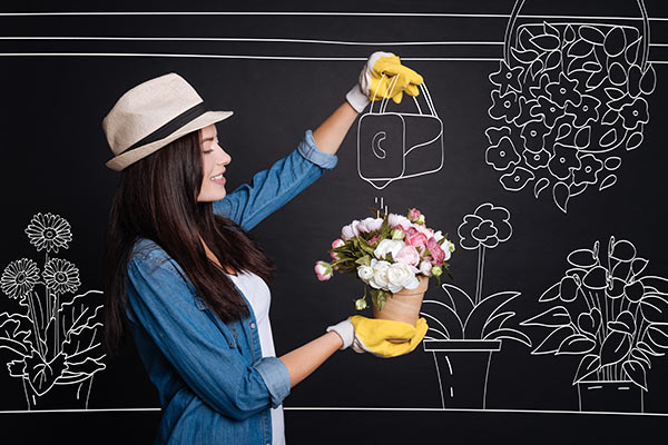 Flores, Cestas e Presentes para todas as Ocasiões