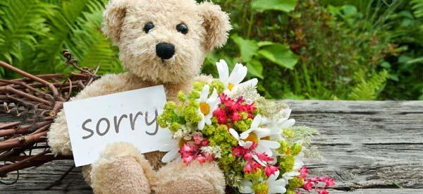 Flores e cestas para se desculpar com elegância e carinho!