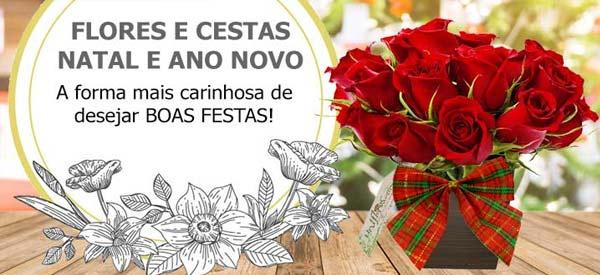 Flores e cestas para celebrar e enviar votos de feliz natal e boas festas!